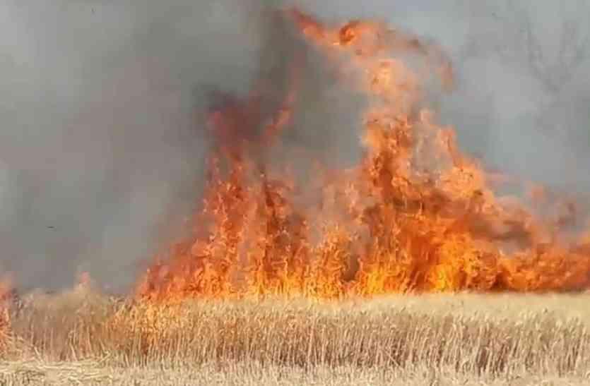 फसलों में आग लगने का सिलसिला शुरू, भीषण आग से किसानों को भारी नुकसान…