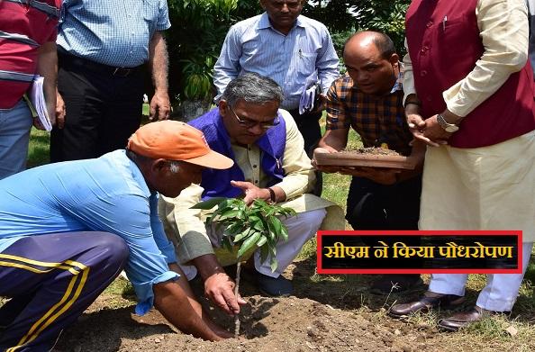 विश्व पर्यावरण दिवस के मौके पर सीएम रावत ने किया पौधरोपण