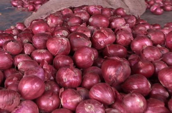 प्याज ने निकाले लोगों के आंसू… दून में 65 से 80 रुपए किलो हुआ प्याज… यहां मिलेगा सस्ता प्याज