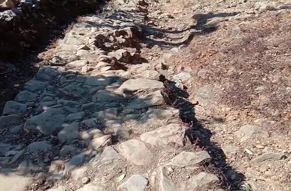 टिहरी: आज भी नहीं पहुंच पाई यहां सड़क… 5 किलोमीटर पैदल चढ़ाई चढ़ते हैं ग्रामीण
