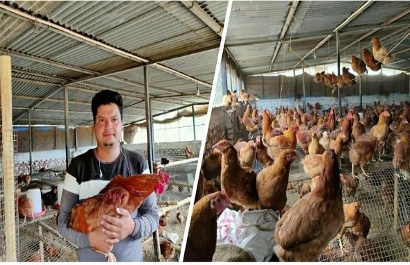 पौड़ी के अनुज बिष्ट: सॉफ्टवेयर इंजीनियर से बन गए मुर्गी पालक, आज कमा रहे हैं 60 हजार महीना