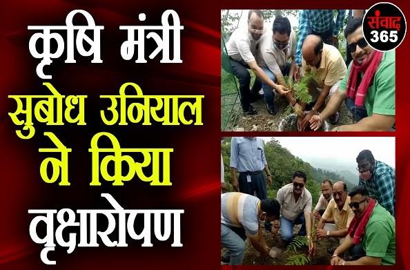 नरेंद्रनगर में हरेला की धूम, कृषि मंत्री सुबोध उनियाल ने किया वृक्षारोपण