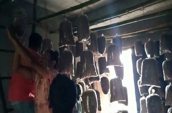 पौड़ी: लोगों को स्वरोजगार के लिए प्रेरित कर रहे दो दोस्त, ग्रामीणों को दे रहे हैं मशरूम प्रशिक्षण
