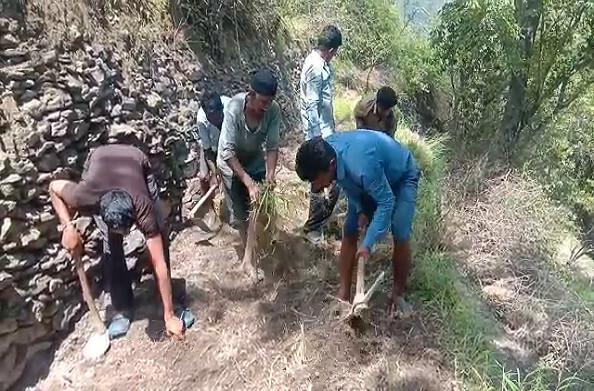 टिहरी: ग्रामीणों ने बंजर जमीन को बना दिया उपजाऊ, 150 नाली जमीन पर किया जा रहा काम