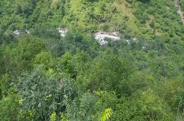 रूद्रप्रयाग के दरबान सिंह ने अपनी मेहनत से उगा दिया एक मिश्रित जंगल