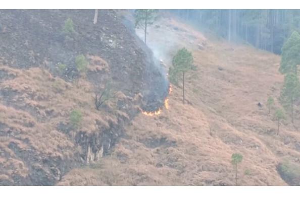 पिथौरागढ़- जंगलों में आग पर वन विभाग का अलग की अलाप !