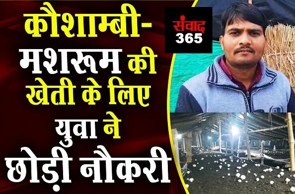 कौशांबी: रेडियो पर मशरूम की खेती के बारे में सुनकर युवक ने नौकरी छोड़ खेती बाड़ी में चमकाई किस्मत