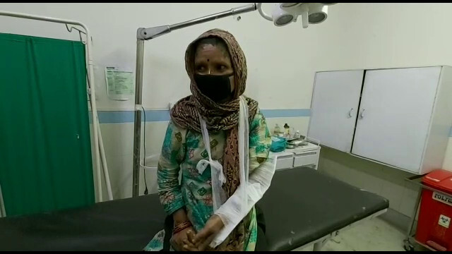 खेत में घास काट रही महिला पर गुलदार ने किया हमला , पहले भी हो चुके हैं कई लोग गुलदार के शिकार
