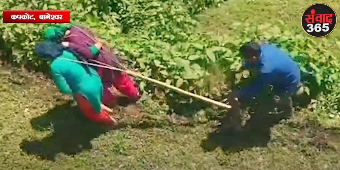 बागेश्वर- पहाड़ों में महिलाओं का एक संघर्ष ऐसा भी,खुद बैल बनकर खेतीबाड़ी करने को मजबूर