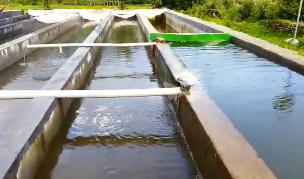 रूद्रप्रयाग जनपद में मछली बीज उत्पादन होगा जल्द शुरू, धारकुड़ी गाँव में मस्त्य बीज उत्पादन केन्द्र की हो रही स्थापना