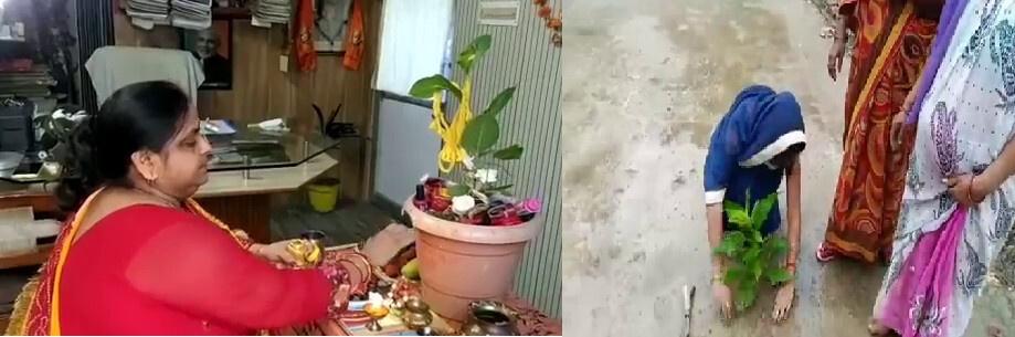अयोध्या: वट सावित्री व्रत के अवसर पर सुहागिनों ने संकल्प लेते हुए बरगद का पौधा रोपण किया